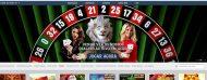 white lion casino interface